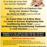 Emphasis Hair Spring Into Summer Promo 2014 200-283